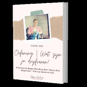 gratis e-book Sylvia Bochem
